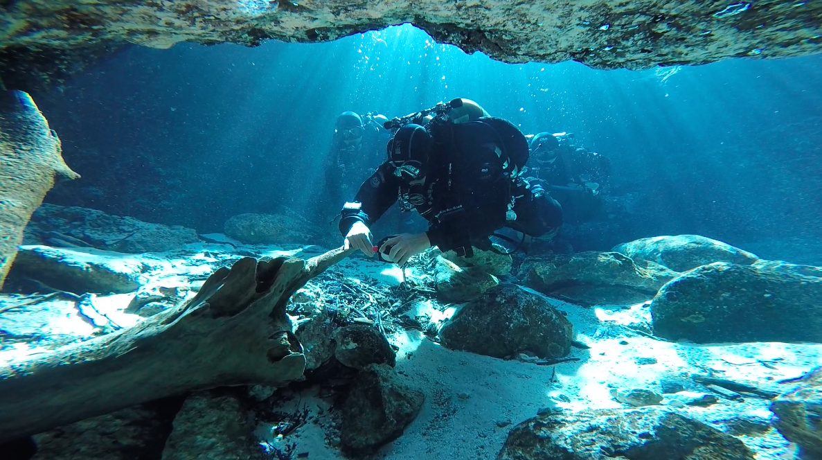 cave diving course at ginnie springs florida