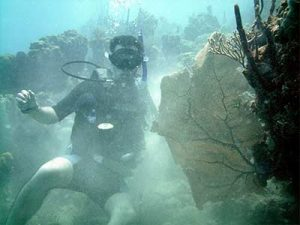 Don't be like this diver who is destroying the reef. If you don't use your skills you will lose them. ReActivate today
