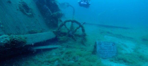 tobermory dive dan's dive shop